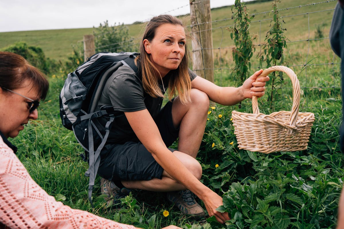 Foraging cookery experience Totally Wild group socially distanced activities sustainable experiences