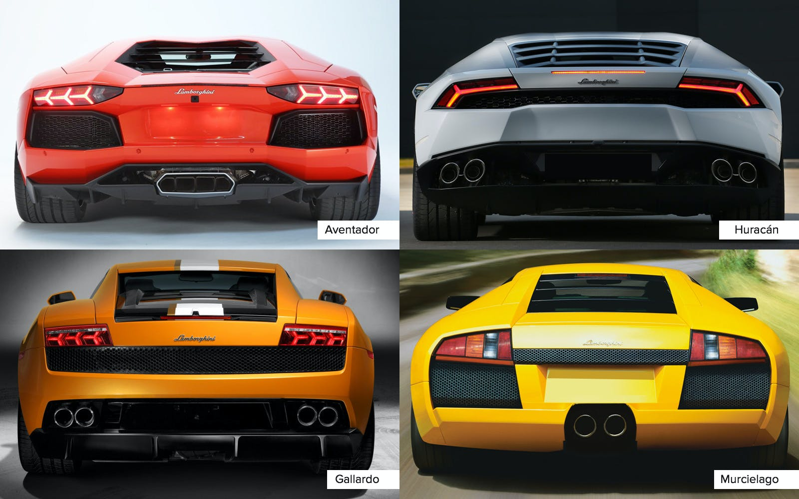 Confused.. Here Is How To Spot The Lamborghini Models