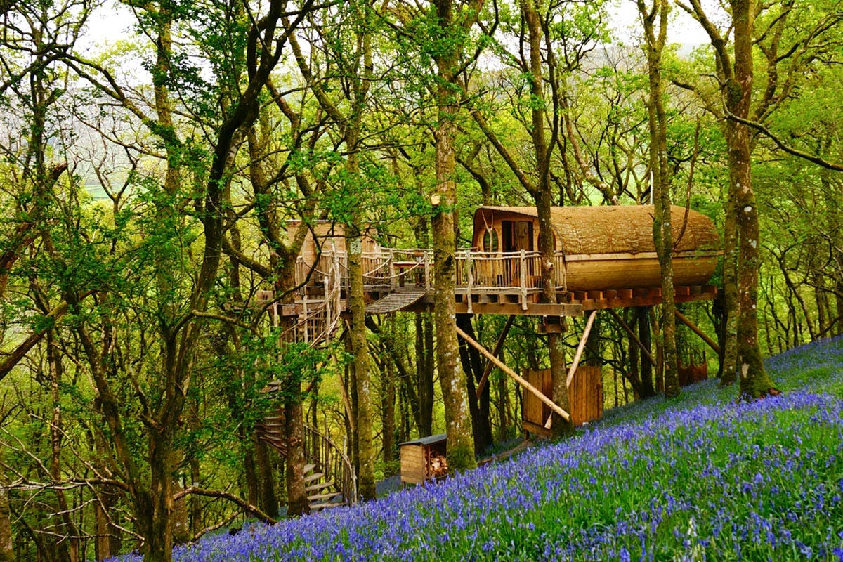 Luxury treehouse short UK break
