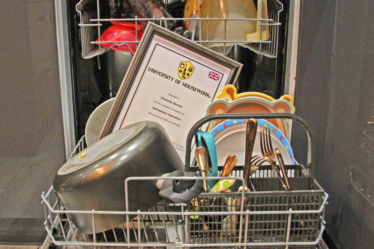 Dishwasher Excellence Online Training Course with the University of Housework