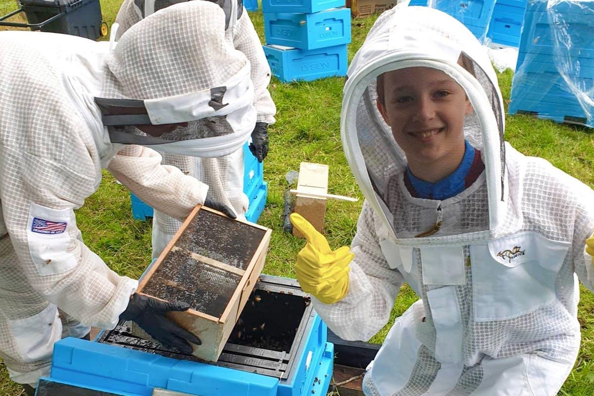 Half Day Beekeeping Experience