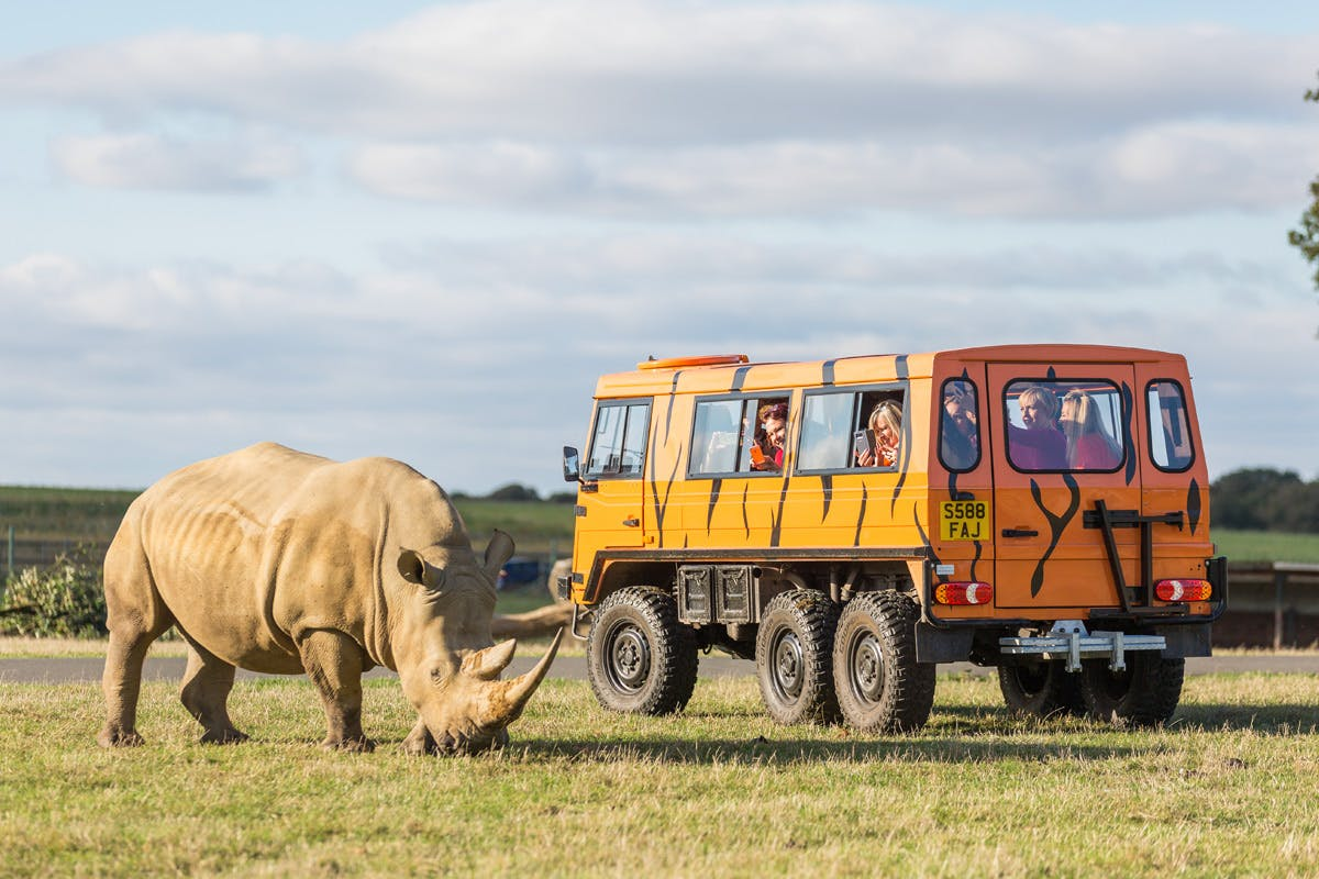 Up-Close Rhino Encounter for Two at Woburn Safari Park
