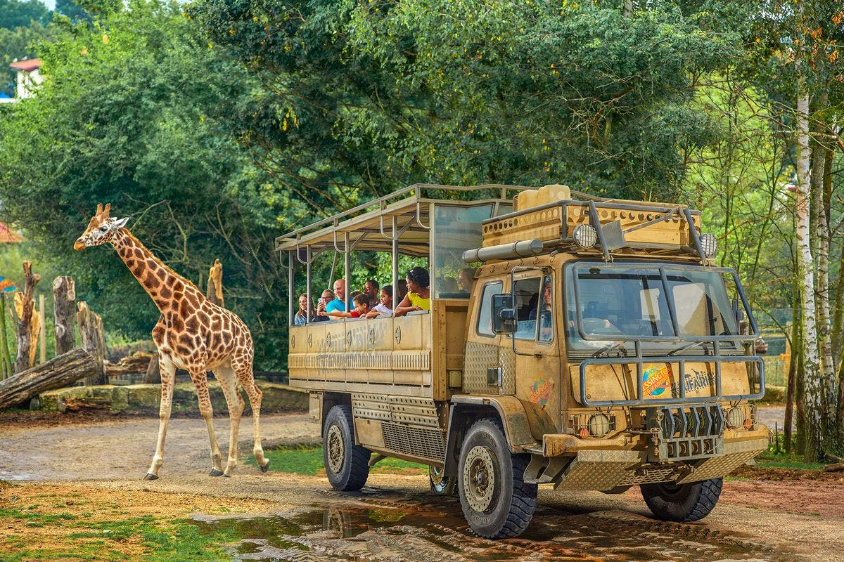 Visit to Chessington World of Adventures for Two Adults & One Child - Peak
