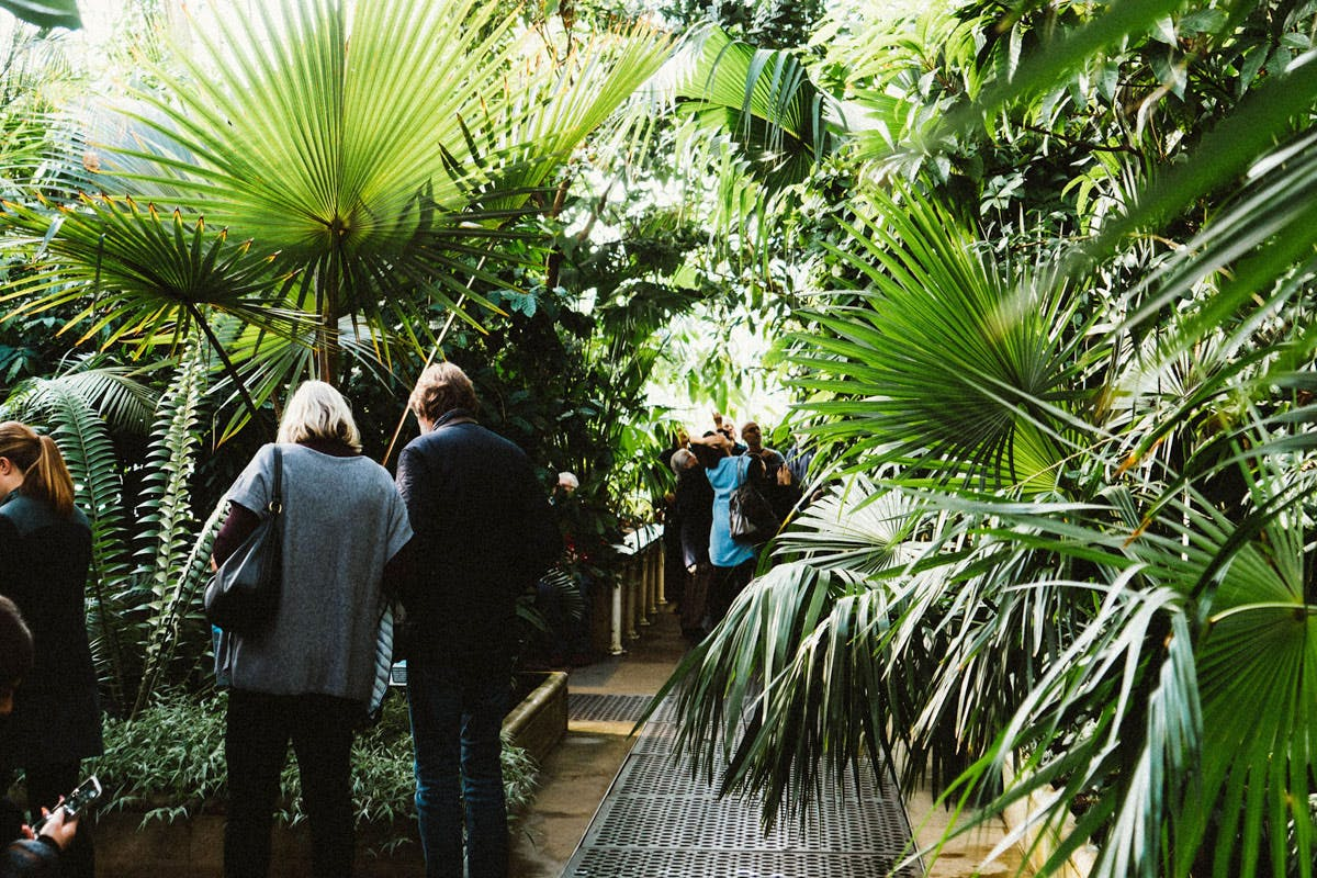 Visita a Kew Gardens per due adulti