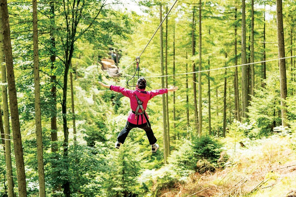 Zip Trekking Adventure for One at Go Ape