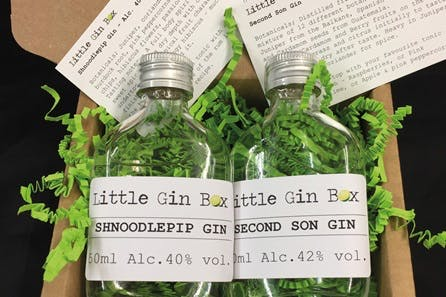 3 Months Gin Subscription with Little Gin Box