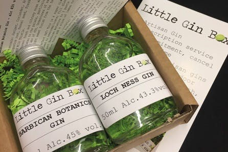 Six Months Gin Subscription with Little Gin Box