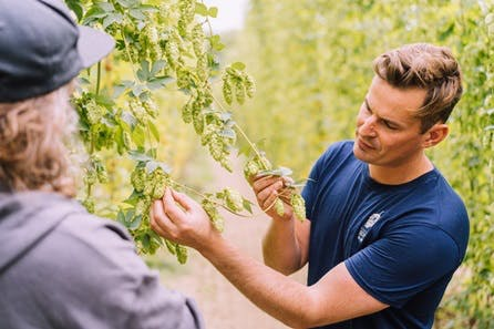 Craft Beer Tasting and Tour of Hukins Hops Farm for Two