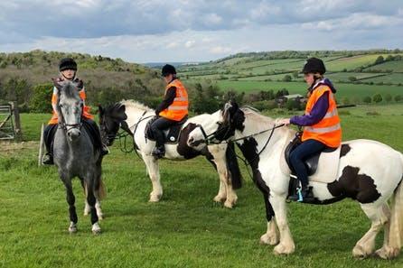 Horse Riding on the Ashridge Estate