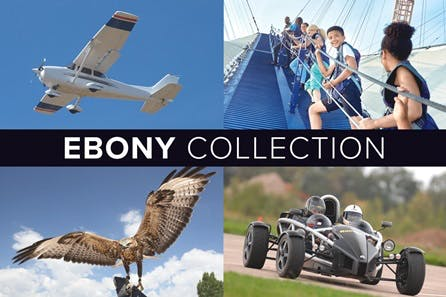The Ebony Collection