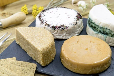 Vegan Cheese Maker with The Vegetarian Society Cookery School