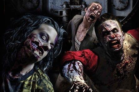 Zombie Apocalypse Experience