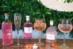At Home Date Night Gin Tasting Experience for Two from The Leafy Elephant