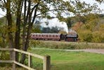 Vintage Steam Train Trip and Traditional Sunday Lunch with Wine for Four